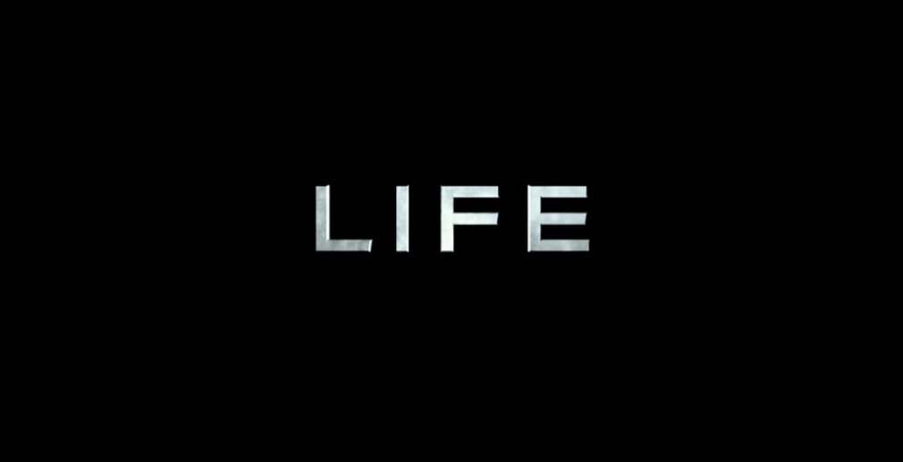 31102016_life_post_1
